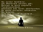Ruhun Kıvrımları