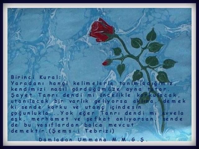 Şems-i Tebrizi 1. Kural