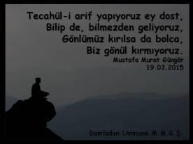 Tecahül-i arif