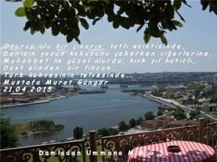 Türk kahvesi telvesi