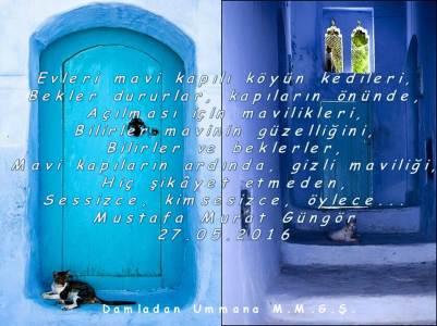Mavi kapılar