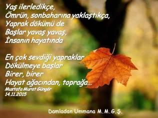 Ömrün Sonbaharı