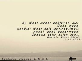 İdeal İnsan