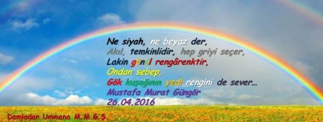 Rengarenk