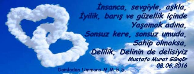 delinin delisi