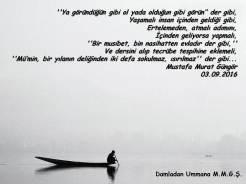 Der gibi