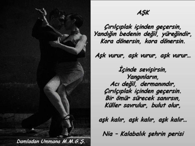 nia-ask
