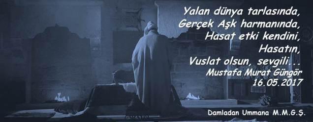 Hasat